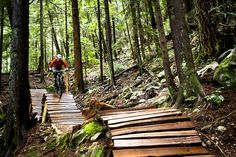 Boys Mountain Bike, Mountain Biking, Mt Bike, Mtb Trails, Forest Design, Rough Riders, Bike Parking, Forest Park, The Great Outdoors