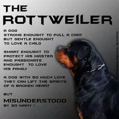 Rottiweiler