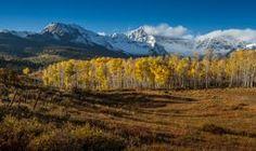 Colorado Fall II via @anewdawnphoto #colorado #fallpics #coloradofall   Colorado Fall II by Steven Reed on Crated
