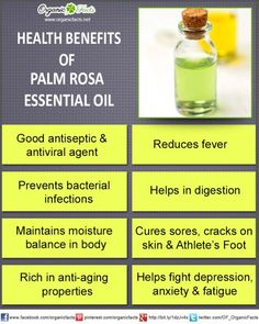 Health benefits of palma rosa essential oil can be attributed to its properties as an antiseptic, antiviral, bactericidal, cytophylactic, digestive, febrifuge and hydrating substance
