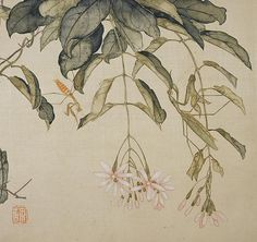 Artist:Ju Lian (Chinese, Qing dynasty China, Album of eight leaves; ink and color on paper x 14 in. Japanese Artwork, Japanese Painting, Chinese Painting, Botanical Drawings, Botanical Art, Art Floral, Ink Painting, Watercolor Art, China Art