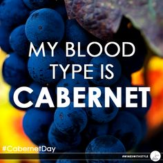 For us, every day is #CabernetDay :P #wine #winelover