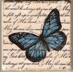 Butterfly Coasters by ShariW - Cards and Paper Crafts at Splitcoaststampers