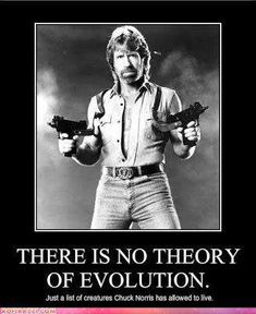 No Theory of Evolution  ~~  Chuck Norris Jokes | The 50 Best Chuck Norris Facts & Memes (Page 3)