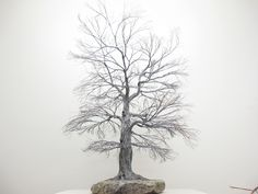 Copper wire tree - Bonsai or Penjing style - Recycled material - Natural rock - Wabi Sabi - Chokkan - Upright
