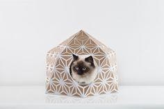Catcube White