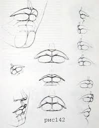 Drawing Tutorial Face Mouths 51 New Ideas Anatomy Sketches, Anatomy Drawing, Anatomy Art, Mouth Drawing, Drawing Heads, Drawing Art, Pencil Art Drawings, Art Drawings Sketches, Drawing Techniques
