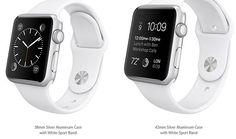 Apple Watch ar putea dezamagi la capitolul autonomie: doar 4 ore de utilizare moderata? - http://all4gadget.ro/apple-watch-ar-putea-dezamagi-la-capitolul-autonomie-doar-4-ore-de-utilizare-moderata/