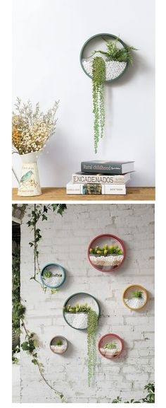 Invite greenery into your home or office with the Round Wall Planter. Shop the Apollo Box for creative home decor and unique gifts. Diy Wall Art, Diy Wall Decor, Green Wall Decor, Wall Mounted Plant Holder, Diy Planters, Succulent Planters, Concrete Planters, Hanging Planters, Succulents Garden