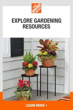 Explore outdoor gardening how-to guides and other helpful resources from The Home Depot. Plus, find Mother's Day gardening gifts for mom. We have the tools you need to garden with confidence and enhance your outdoor space this spring. Tap to get started with The Home Depot today. Gardening Gifts For Mom, Garden Gifts, Gardening Tips, Garden Club, Lawn And Garden, Home And Garden, Porch Decorating, Decorating Ideas, Garden Solutions