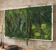 Plants art-wall