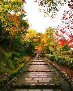 あだしの念仏寺🍁🍂🍁このお寺の奥には、竹林もあり、紅葉も竹林も楽しめます😆💕 過去picです😃  #lovers_nippon#loves_nippon#japan_daytime_view#ptk_japan#ig_nihon#icu_japan#cools_japan#wu_japan#igmaster#ig_japan#ig_nippon#igersjp #pics_jp#best_free_shot#jp_gallery#japanigram #special_spot_#japan_art_photography#whim_life#loves_united_places#japanigram#japan_camera#photo_jpn#bestjapanpics#special_zipangu_#phos_japan#far_eastphotography#japan_of_insta#tokyocameraclub#art_of_japan