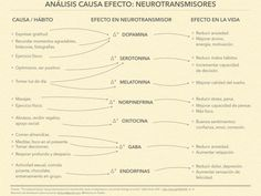 Causa-Efecto-Neurotransmisores (1)