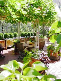 Edmund Hollander Landscape Architects | Park Avenue Traditional