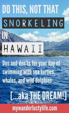 Dos and don'ts for your day snorkeling in Hawaii. Swimming with sea turtles, whales, and wild dolphins (and their babies!) is pretty much the dream, right?