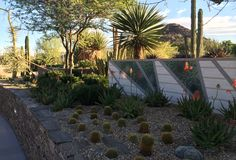 Beautiful mosaics are along the walls in the Desert Terrace Garden.