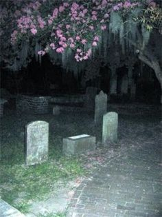 Ghost in the graveyard Imagenes Dark, Nicole Dollanganger, Statues, Grunge Photography, Cult, Creepy Cute, Aesthetic Grunge, Aesthetic Pictures, Scenery