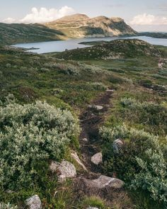 Guide to hiking Gaustatoppen in Telemark, Norway - How to see one-sixth of mainland Norway from Telemark's highest mountain + Best Tips & Routes to the Top. #mountain #norway #scandinavia Hiking Routes, Hiking Guide, Norway Travel Guide, Park Hotel, Best Hikes, Travel Guides, Yoga Poses, Beautiful Places, Places To Visit