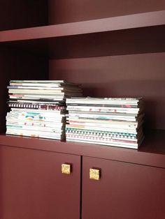 Designed by Evelijn Ferwerda & Rachel van Dullemen ; custom made bookshelves