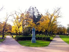 First day of winter 2012 ~ Rosalind Park ~ Bendigo