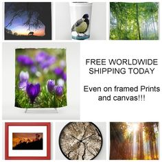 FREE WORLDWIDE SHIPPING ON EVERYTHING TODAY!! Finally even on framed prints and canvases!  Animal, landscape,forest, sunshine, sunrays, sunbeams, digital art, photography, nature, funny, silhouettes, halloween, scary, eerie, space, fauna, flora, flowers, castles, moody, neo-mystical