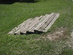 railroad tie steps just right in the middle of grass
