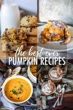 When it comes to Fall, pumpkin recipes are all I want! These are some of the best pumpkin recipes ever. Savory and sweet, and even a dog treat!