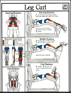 how to build up your legs muscles fast