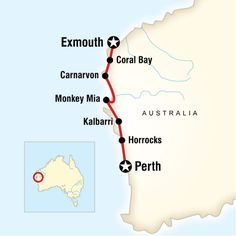 Best of the Coast - Western Australia: from Perth to Exmouth. See the marine life at Shark Bay, check out the rare stromatolites, explore Cape Range National Park, take a canoe tour with Aboriginal guides and learn about their legends.