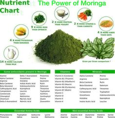 """Often called the """"Miracle Tree,"""" the Moringa gets its reputation from the vast range of nutritional and medicinal properties it contains. Many hail the Moringa tree as a super food, a tool for the … Protein Energy, Energy Bars, Healing Herbs, Natural Healing, Holistic Healing, Top Nutrition, Superfoods, Moringa Planta, Moringa Recipes"""