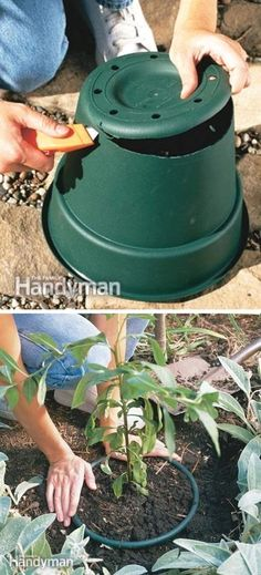 Whether you have a vegetable garden, rose garden or weed garden, here is the best round up of gardening tips and ideas that you've probably never tried! All of these little tricks are resourceful…MoreMore  #GardeningIdeas