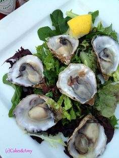 Kushi Oysters. Tabasco & Lemon. Driftwood Bistro. Nanaimo Restaurants. Vancouver Island. www.cakesandamyeatout.com Seafood Salad, Vancouver Island, Driftwood, Oysters, Sprouts, Amy, Restaurants, Lemon, Beef