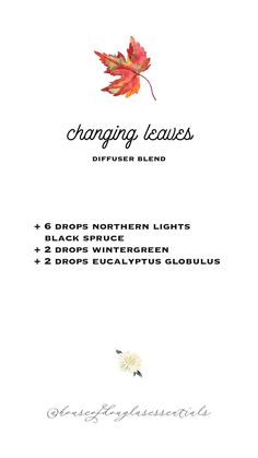 Fall Essential Oils, Essential Oil Candles, Essential Oil Diffuser Blends, Young Living Essential Oils, Wintergreen Essential Oil, Changing Leaves, Diffuser Recipes, Wellness, Northern Lights