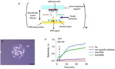 Organized Cell Adherent Array for Real-Time Multiplex Detection of Secreted Molecules by Christophe A Marquette The Unit, Organization, Journal, Getting Organized, Organisation, Tejidos