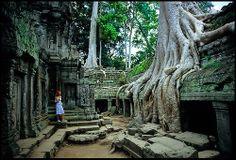 Angkor | destaca igualmente la terraza de los elefantes llamada asi por