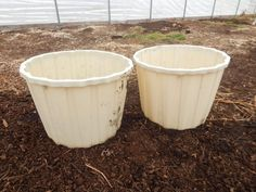 How to Grow a Massive Sweet Potato Harvest With DIY Containers - Gardening Channel