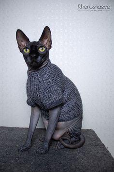 Cat blackwhite sweater size M knitting pattern PDF + The pattern supplement, Sphynx turtleneck knitting pattern PDF Sphynx Cat Clothes, Knitted Cat, Cat Sweaters, Cat Costumes, Sweater Knitting Patterns, Sweater Design, Stitch Markers, Etsy Handmade, Handmade Items