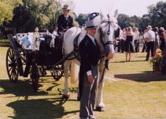 #horseandcarriage #guidesforbrides
