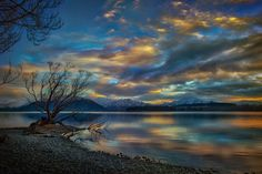 Another lonely tree in Wanaka - There are a lot of lonely trees along Lake Wanaka.  This one is not so popular as the lonely willow in Wanaka.