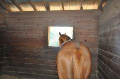 Stable Health - Tips on how to get your stable ready for winter