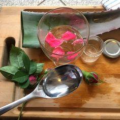 Φτιάξε μόνη σου πανεύκολα έναν Αντιρυτιδικό Ορό με αλόη -idiva.gr Aloe Vera, Alcoholic Drinks, Hair Beauty, Wine, Tableware, Glass, Board, Dinnerware, Drinkware