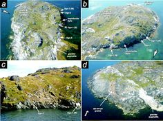 The Akilia Controversy: field, structural and geochronological evidence questions interpretations of >3.8 Ga life in SW Greenland