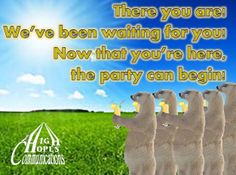 There you are. www.highhopecommunications.ca Waiting For You, Spring, Party, Receptions, Direct Sales Party