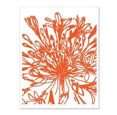Botanical Flower Digital Print - Vintage Inspired - Orange Tango - Tangerine - Wall Art  - Spring Summer Modern Home Decor - Under 20