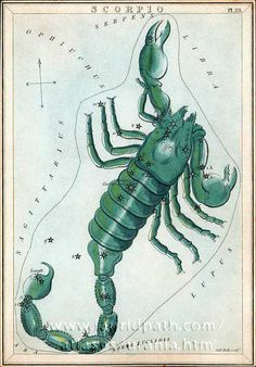 Card 23 Scorpio - Urania's Mirror