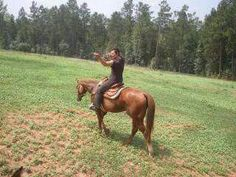 Save a horse, ride a Reedus