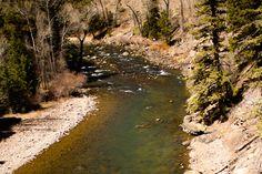 Colorado Fly Fishing   Trout Fishing   Conejos River Fishing