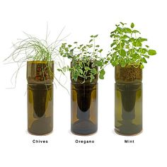 "GROWBOTTLE $ 35.00 ""How does your garden grow? Cultivate your indoor green thumb with a hydrogarden sprouting from a re-purposed wine bottle. The ideal environment for hydroponic herb-growing, allowing sunshine to permeate throughout, each set comes ready to use with clay pebbles, wool wick, plant nutrient, cork coaster, and seeds. Choose between Organic Basil, Organic Chive, Heirloom Mint, Organic Oregano, or Organic Parsley. You'll enjoy this product year-round, both for the pleasing…"
