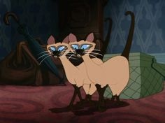 """Ah, Lady and the Tramp- """"we are Siamese if you please"""" (now try to get it out of your head...) (this is a .gif by the way, it moves!)"""