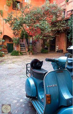Vespa Px, Vespa Lambretta, Vespa Scooters, Motorbikes, Motorcycle, Motorcycles, Motorcycles, Choppers